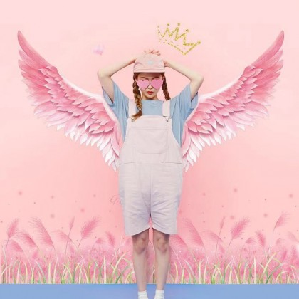 angel feather wings pink grass baseboard background wall art decoration sticker