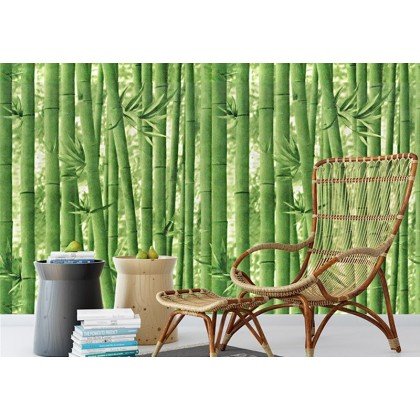 (45cm Width) Green Bamboo Pattern Background Furniture Refurbished Contact Paper PVC Self-Adhesive Waterproof Wallpaper Sticker